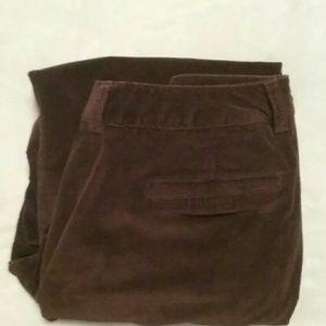 Pants - Women's Petite Brown Pants Size 8p Preowned